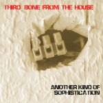 CHUNK046: Third Bone From The House - Another Kind Of Sophistication